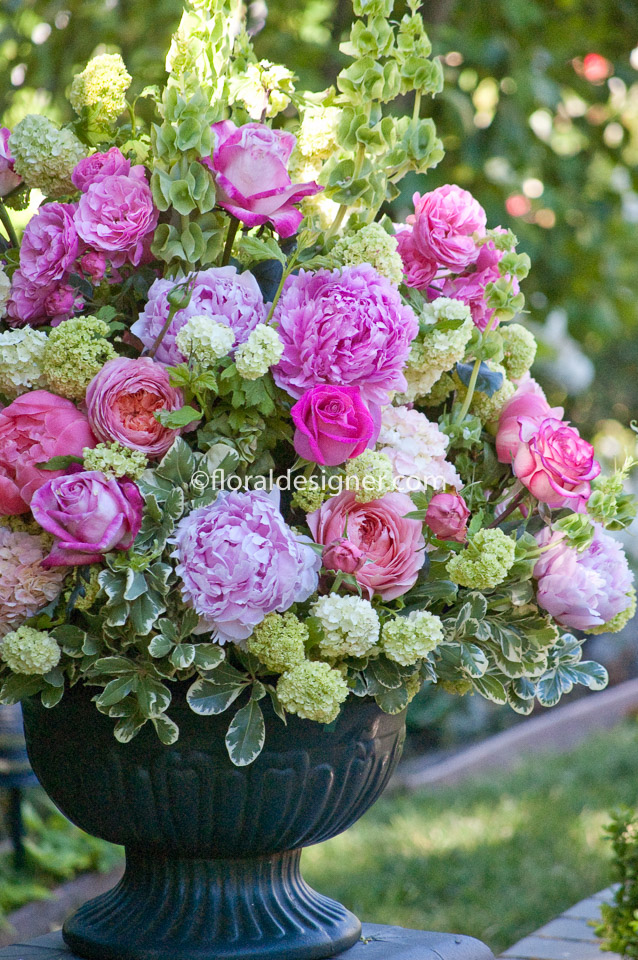 Portfolio by flowers :: English garden roses :: Katherine Bergman ...